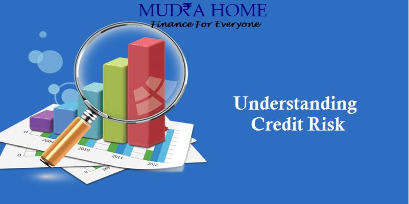 Understanding Credit Risk